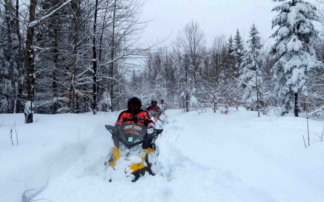 Snowmobile Survival Tips & Video