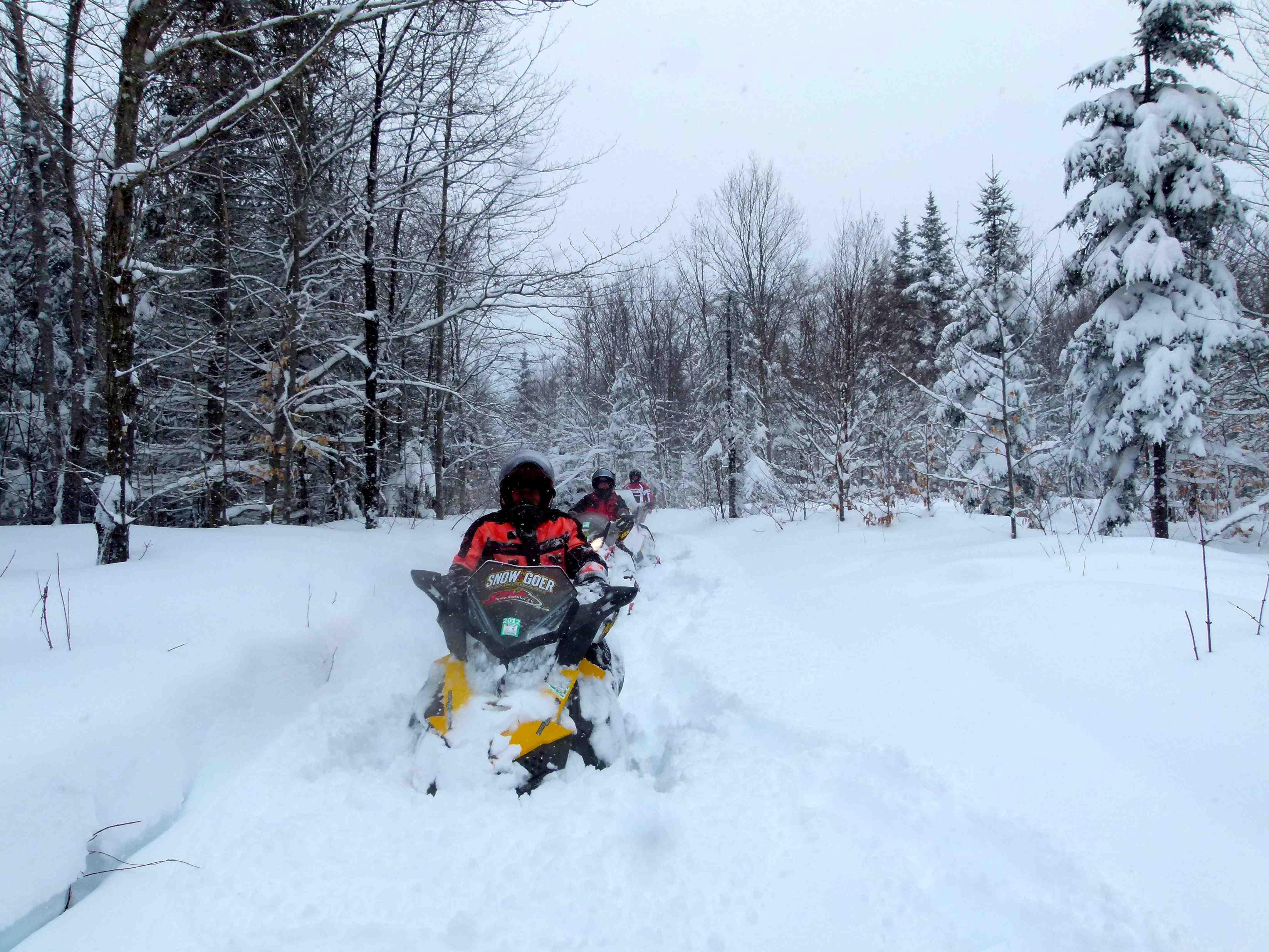 Snowmobile Survival Priorities