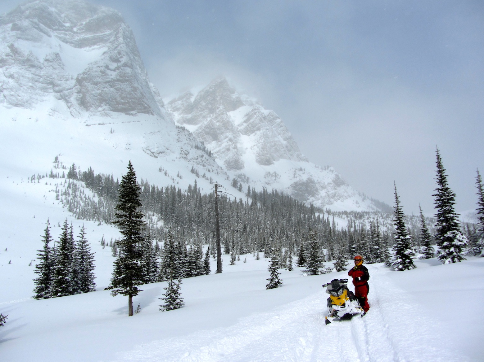 Snowmobile Crowsnest Pass Alberta Tour