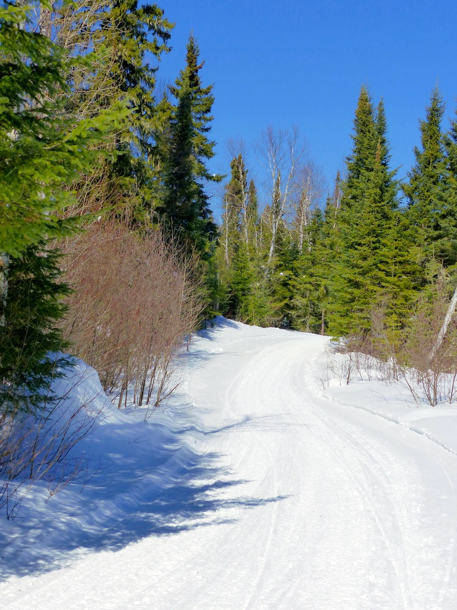 Over Prepping Snowmobile Trails Top 10 Clues