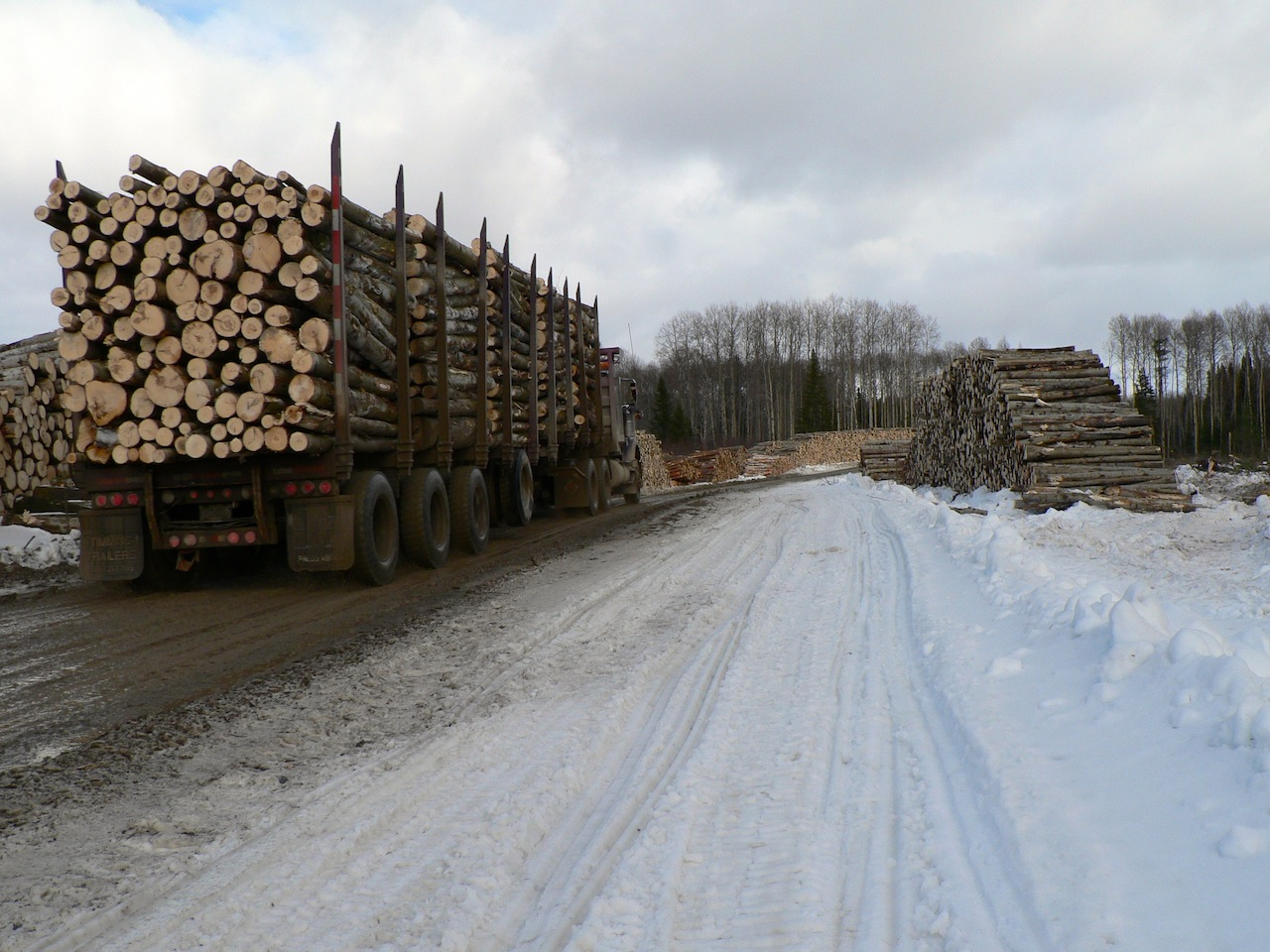Logging truck while snowmobiling active logging roads