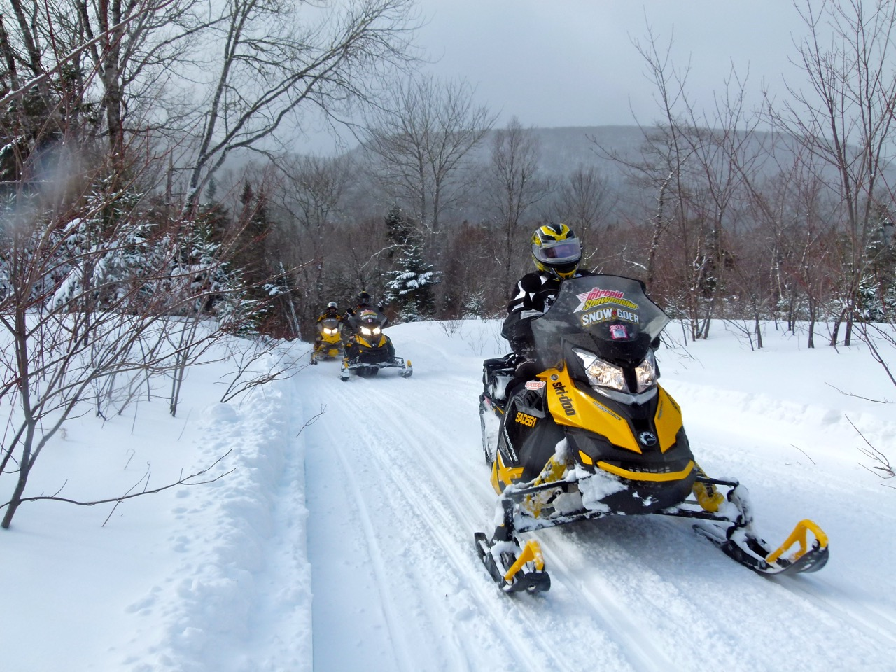 Snowmobile Cape Breton Fundy Highlands Tour