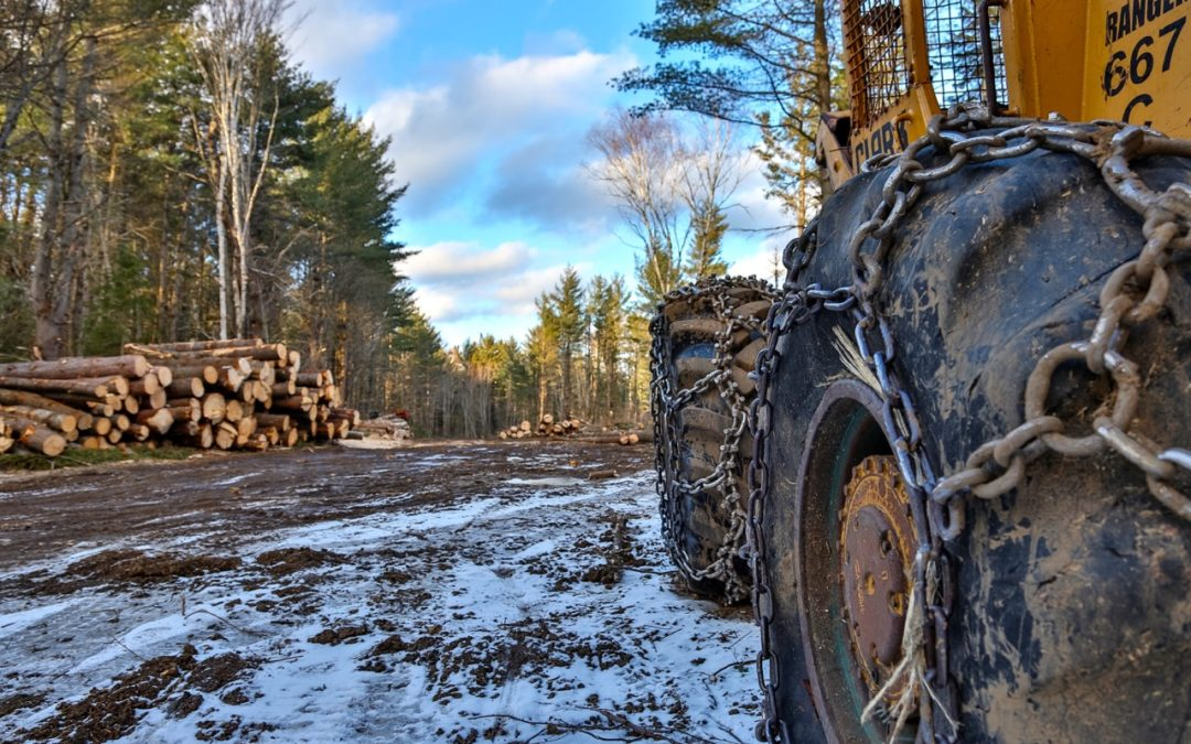 Snowmobiling Active Logging Roads Tips