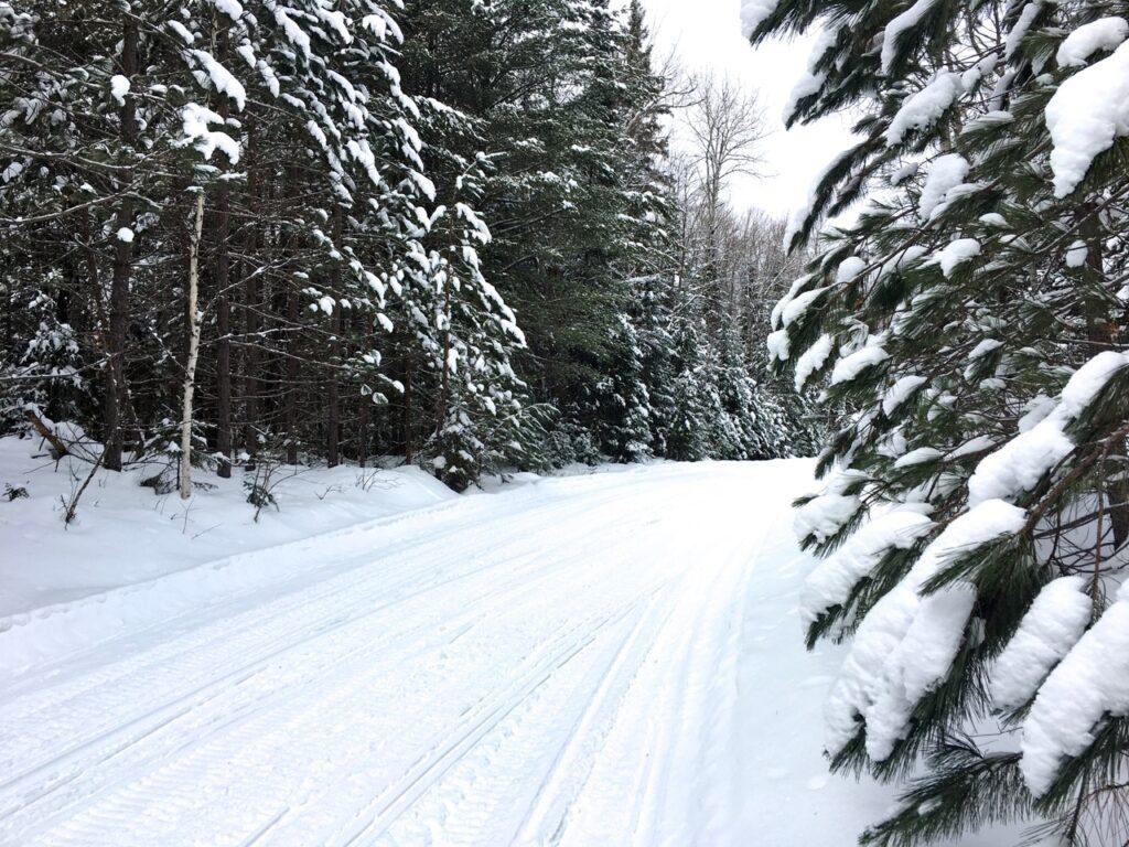 2017 winter