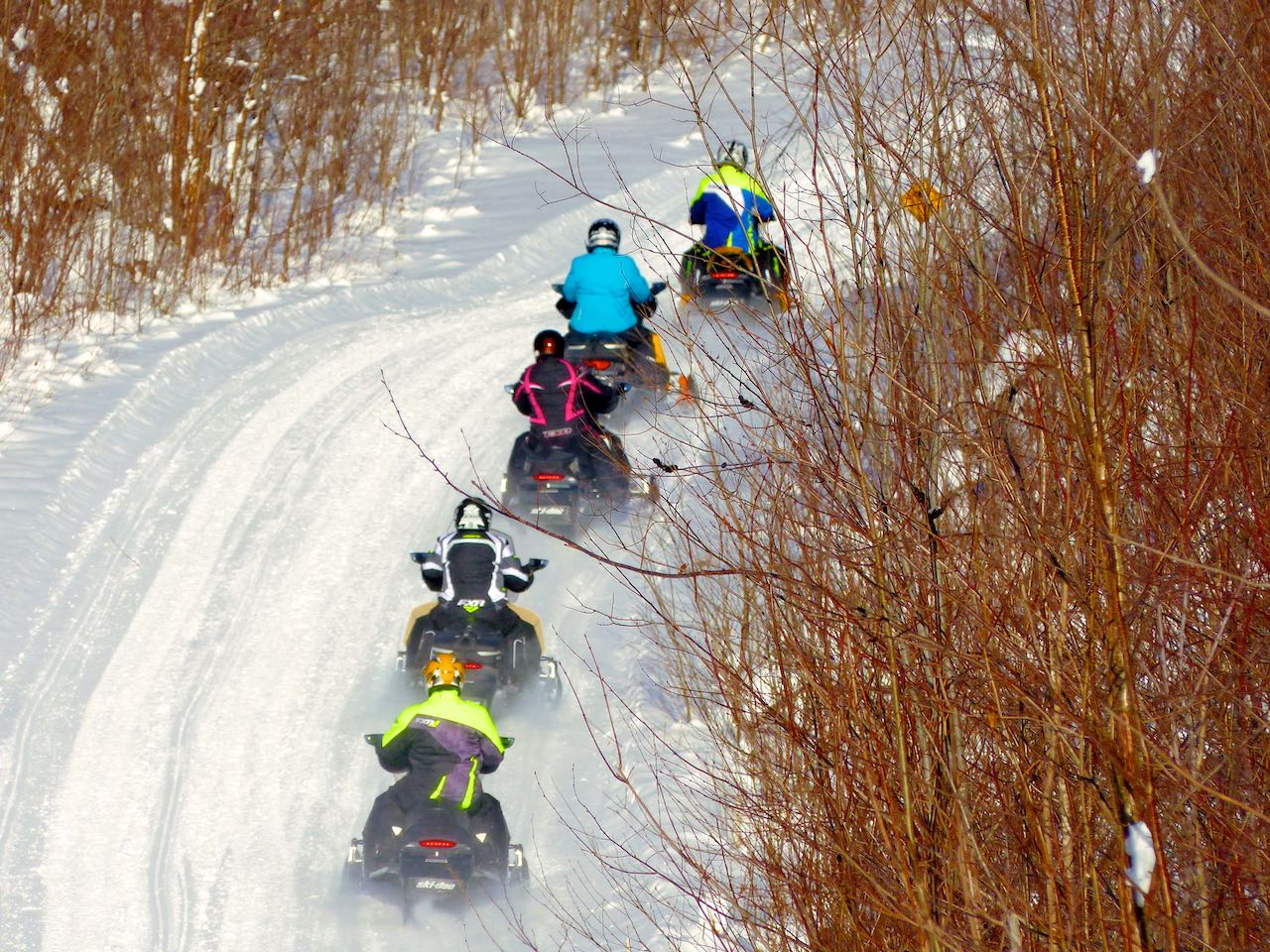 Five FXR riders on Quebec snowmobile trail