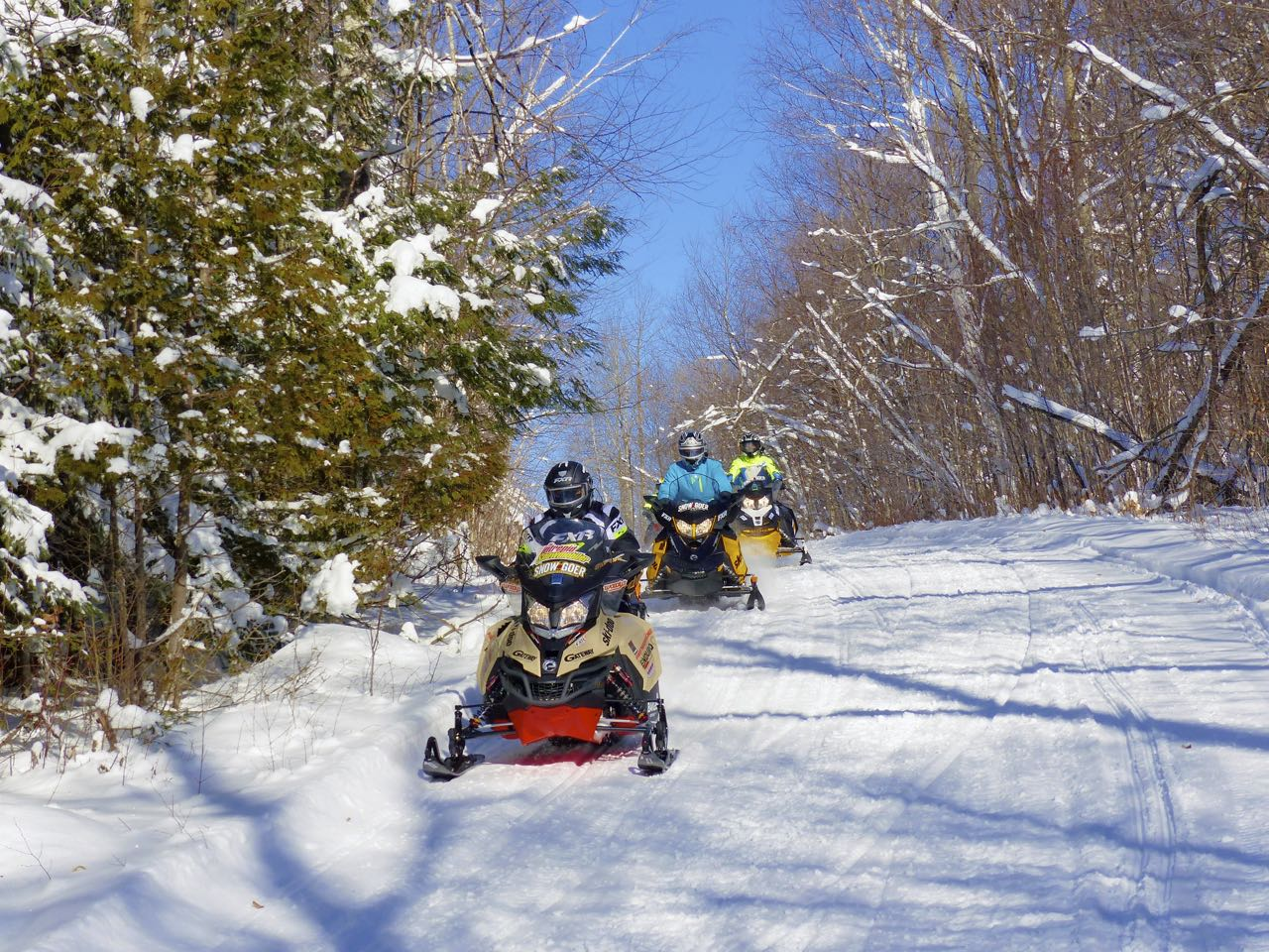 Ski Doo sleds on FCMQ trail in Mont Laurier Quebec