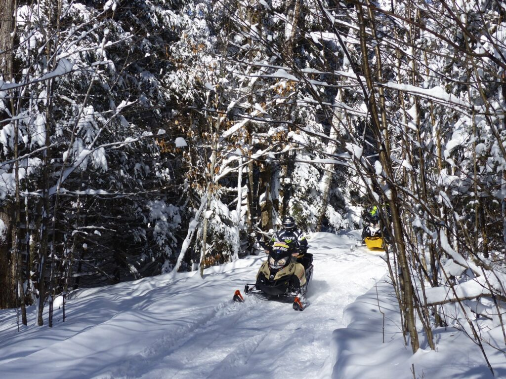 snowy trees on Sundridge Ontario snowmobile ride