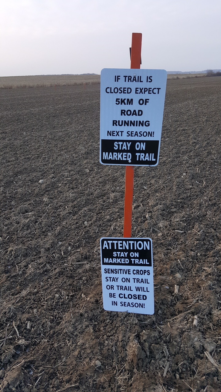 stay on trail or expect more road running