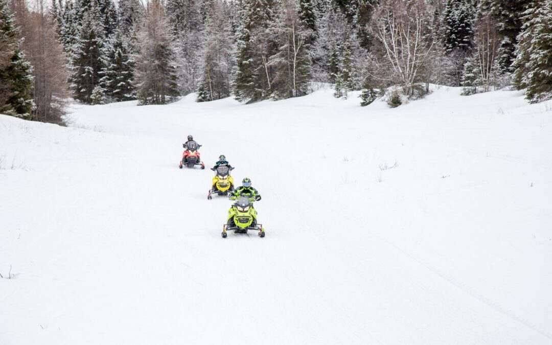 Snowmobile Dealers Not To Blame